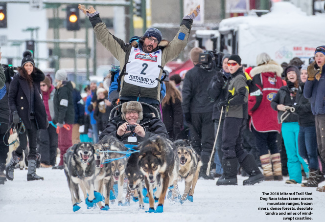 Planning sled dog racing events